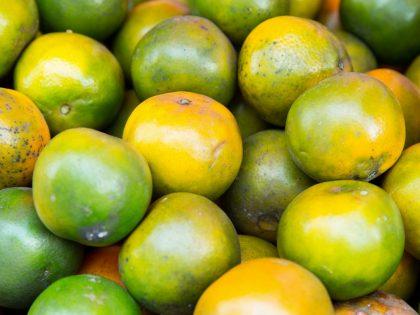 Spotlight oil: Mandarin